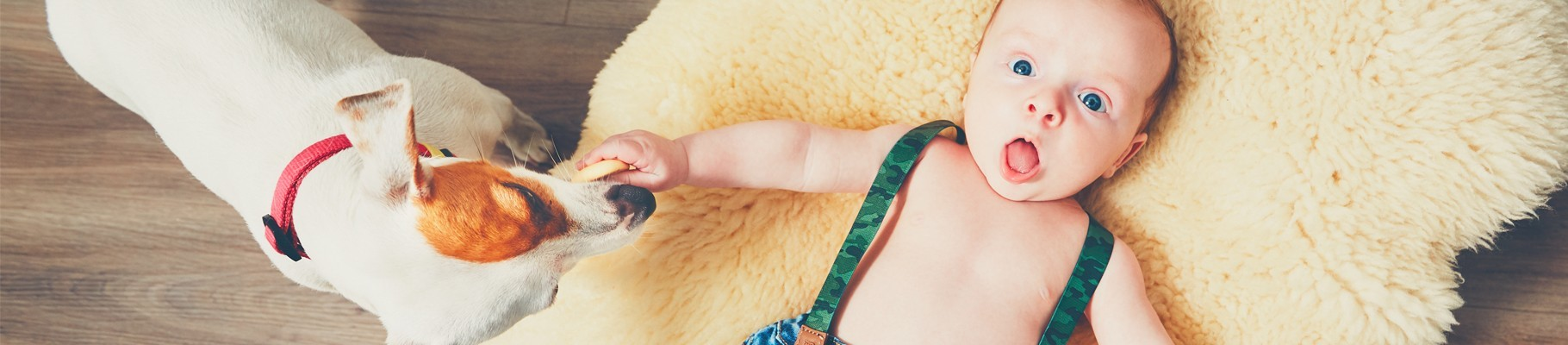 INSTAKIDS | Vêtements pour Bébé garçon